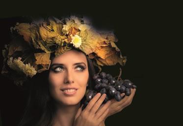 percorso massucco wine wellness